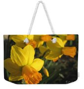 Dwarf Cyclamineus Daffodil Named Jet Fire Weekender Tote Bag