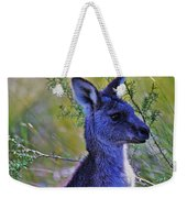 Eastern Grey Kangaroo Weekender Tote Bag