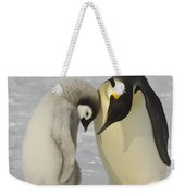 Emperor Penguins Weekender Tote Bag