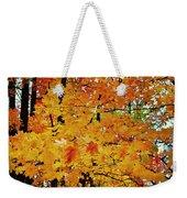 Fall Colors 2014-3 Weekender Tote Bag