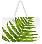 Fern Leaf Weekender Tote Bag by Elena Elisseeva