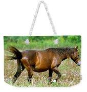 Florida Spanish Horse Weekender Tote Bag