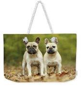 French Bulldogs Weekender Tote Bag