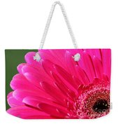 Gerbera Daisy Named Raspberry Picobello Weekender Tote Bag