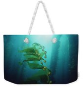 Giant Kelp Macrocystis Pyrifera Forest Weekender Tote Bag