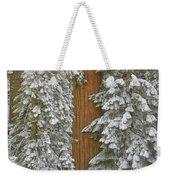 Giant Sequoias And Snow  Weekender Tote Bag by Yva Momatiuk John Eastcott