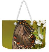Gold Rim Swallowtail Butterfly Weekender Tote Bag