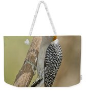 Golden-fronted Woodpecker Weekender Tote Bag
