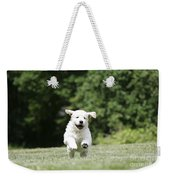 Golden Retriever Puppy Weekender Tote Bag by John Daniels