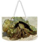Green Striped Hermit Crab Weekender Tote Bag