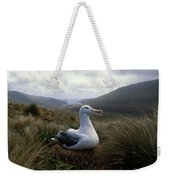 Grey-headed Albatross Weekender Tote Bag