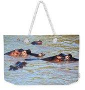 Hippopotamus Group In River. Serengeti. Tanzania. Weekender Tote Bag