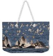 Humpback Whales Feeding With Gulls Weekender Tote Bag