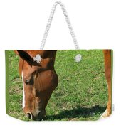 In Green Pasture Weekender Tote Bag