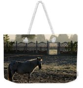 In The Frosty Morning Weekender Tote Bag