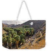 Indian Canyons - California Weekender Tote Bag