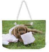 Irish Setter Puppy Weekender Tote Bag
