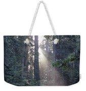 Jedediah Smith Redwoods State Park Redwoods National Park Del No Weekender Tote Bag