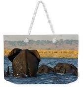 Kalahari Elephants Crossing Chobe River Weekender Tote Bag