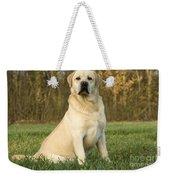 Labrador Retriever Dog Weekender Tote Bag