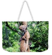 Lady At The Fountain Weekender Tote Bag