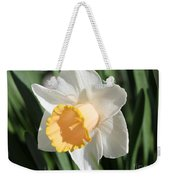 Large-cupped Daffodil Named Mrs. R.o. Backhouse Weekender Tote Bag