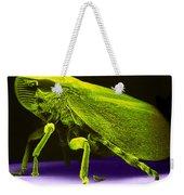 Leafhopper, Sem Weekender Tote Bag by David M. Phillips