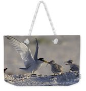 Least Tern Feeding It's Young Weekender Tote Bag