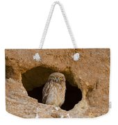 Little Owl Athene Noctua Weekender Tote Bag