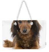 Long-haired Dachshund Weekender Tote Bag