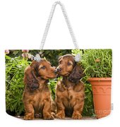 Long-haired Dachshunds Weekender Tote Bag