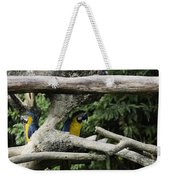 2 Macaws Framed By Tree Branches Inside The Jurong Bird Park Weekender Tote Bag