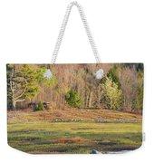 Maine Blueberry Field In Spring Weekender Tote Bag by Keith Webber Jr