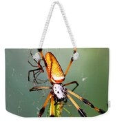 Male And Female Silk Spiders With Prey Weekender Tote Bag