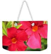 Mandevilla Named Sun Parasol Crimson Weekender Tote Bag