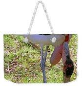 Marabou Stork Weekender Tote Bag