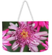 Marguerite Daisy Named Summer Song Rose Weekender Tote Bag