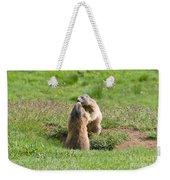 Marmots Weekender Tote Bag