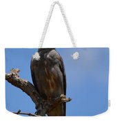 Merlin Falcon  Weekender Tote Bag