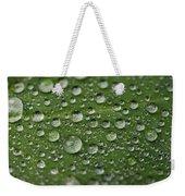 Morning Dew Weekender Tote Bag