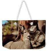 Mule Deer Doe Weekender Tote Bag
