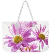 Mums Flowers Against White Background Weekender Tote Bag
