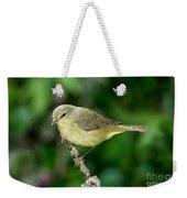 Orange-crowned Warbler Weekender Tote Bag