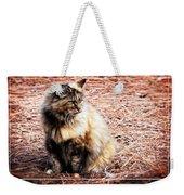Pine Needle Kitty Weekender Tote Bag