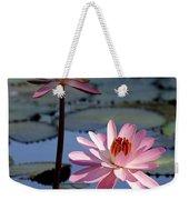 Pink Water Lily In The Spotlight Weekender Tote Bag