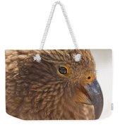 Portrait Of Nz Alpine Parrot Kea Nestor Notabilis Weekender Tote Bag