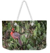 Posing For The Photo Weekender Tote Bag