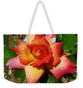 Rainbow Sorbet Rose Weekender Tote Bag by Denise Mazzocco
