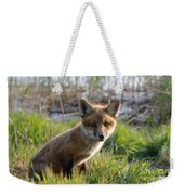 Red Fox Kit Weekender Tote Bag