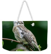 Rose-breasted Grosbeak Weekender Tote Bag
